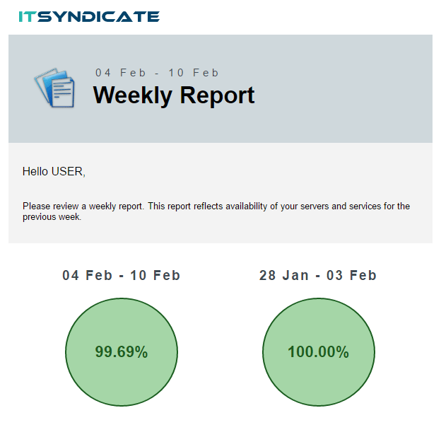 NEW WEEKLY REPORT LOOK